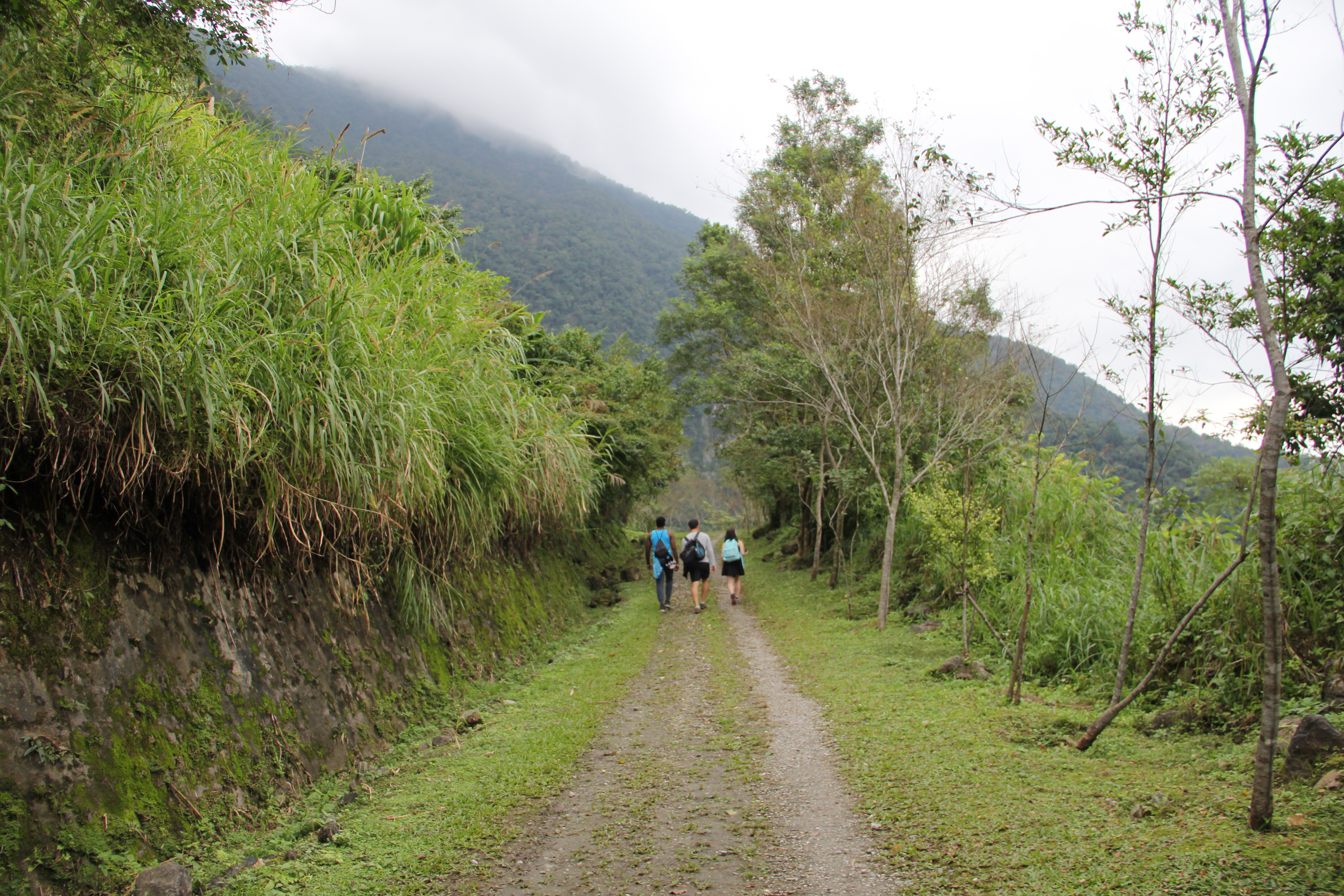 A Trail Hidden in the Mountains of Hualien   Hiking in Taiwan